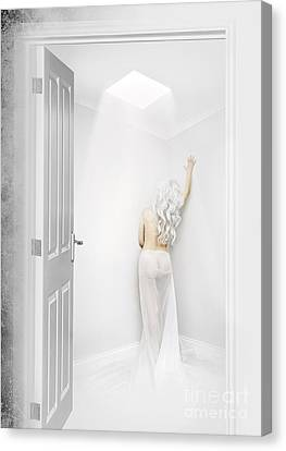 White Room Canvas Print by Svetlana Sewell