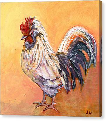 White Rooster Canvas Print by Jennifer Lommers