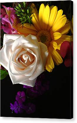 Canvas Print featuring the photograph White Rose by Meghan at FireBonnet Art
