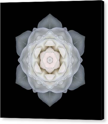 White Rose I Flower Mandala Canvas Print