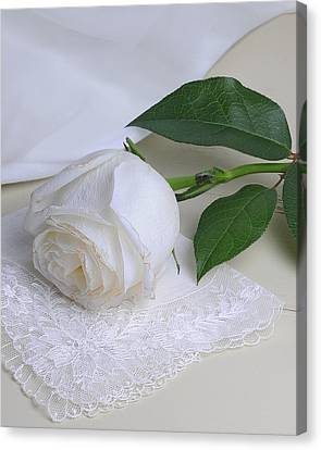 Canvas Print featuring the photograph White Rose by Krasimir Tolev