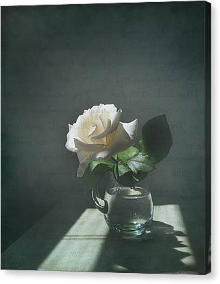 White Rose Still Life Canvas Print by Deborah Smith