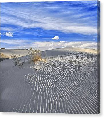 Canvas Print featuring the photograph White Sand And Blue Sky by Wendell Thompson