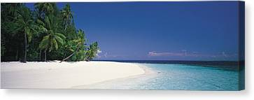 White Sand Beach Maldives Canvas Print by Panoramic Images