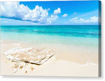 White Sand Canvas Print by Chad Dutson