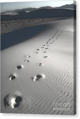 White Sands New Mexico Footsteps Canvas Print by Gregory Dyer