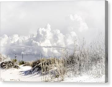 White Sands Winter Canvas Print