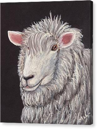 White Sheep Canvas Print by Anastasiya Malakhova
