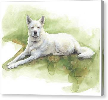 White Sled Dog Lying On Grass Watercolor Portrait Canvas Print by Mike Theuer