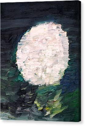 White Sphere Canvas Print by Fabrizio Cassetta