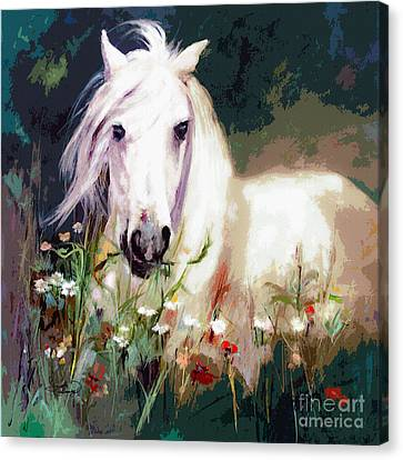 White Stallion In Wildflower Field Canvas Print
