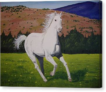 Canvas Print featuring the painting White Stallion by Norm Starks