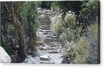 Canvas Print featuring the photograph White Steps by Philomena Zito