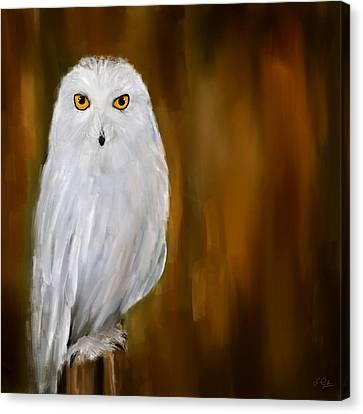 White Stranger Canvas Print by Lourry Legarde