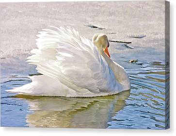 White Swan Canvas Print by Elaine Manley