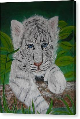 Canvas Print featuring the painting White Tiger Cub by Mary M Collins