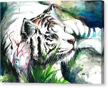 White Tiger Resting Canvas Print by Tiberiu Soos