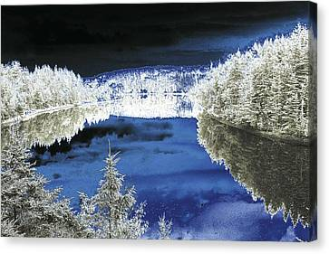 White Trees And River Canvas Print