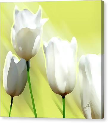 White Tulips Canvas Print by Ben and Raisa Gertsberg