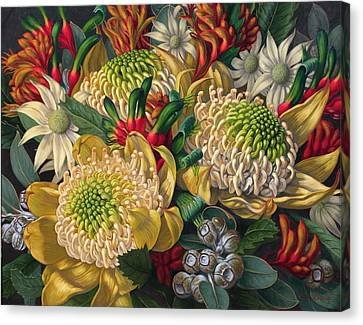 White Waratahs Flannel Flowers And Kangaroo Paws Canvas Print by Fiona Craig