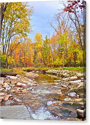 White Water Autumn Canvas Print by Frozen in Time Fine Art Photography