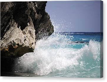 White Water Paradise Canvas Print