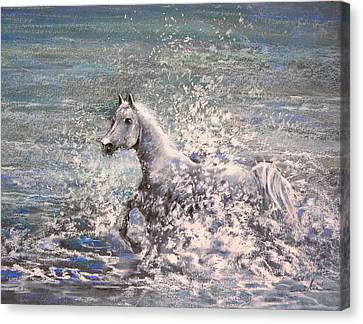 White Wild Horse Canvas Print by Miki De Goodaboom