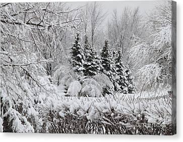 White Winter Day Canvas Print