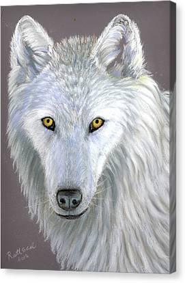 White Wolf Canvas Print by Ruth Seal