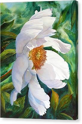 White Wonder Canvas Print by Karen Mattson