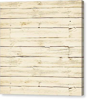 White Wood Canvas Print by P S