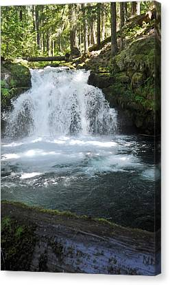 Whitehorse Falls Series 9 Canvas Print