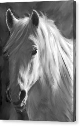 Whitehorse Canvas Print