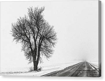 Whiteout Canvas Print by Chris Austin