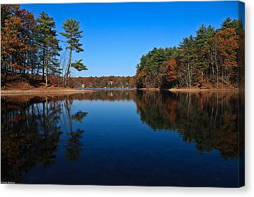 Whites Pond Canvas Print by Corey Sheehan