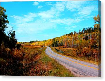 Whiteshell Provincial Park Canvas Print by Larry Trupp