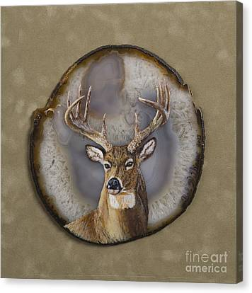 Whitetail Authority Canvas Print by Bob Williams