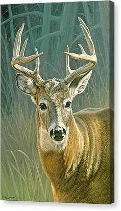 Whitetail Buck Canvas Print by Paul Krapf