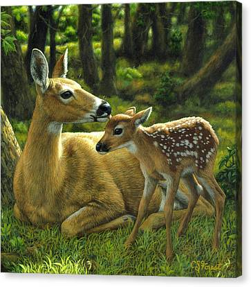 Whitetail Deer - First Spring - Square Canvas Print
