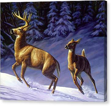 North American Wildlife Canvas Print - Whitetail Deer Painting - Startled by Crista Forest