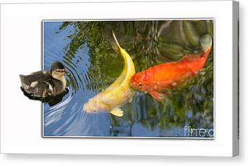 Canvas Print featuring the photograph Who Are You? by Mariarosa Rockefeller