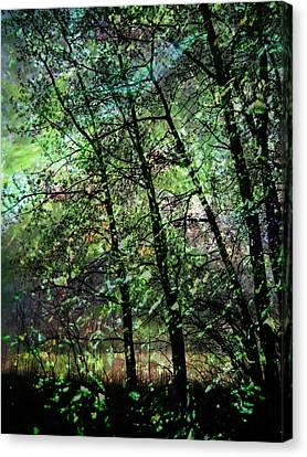 Leaves Canvas Print - Who Has Seen The Wind?  2 by Shirley Sirois