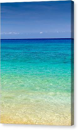 Who Wants To Go For A Swim? Canvas Print by Pierre Leclerc Photography