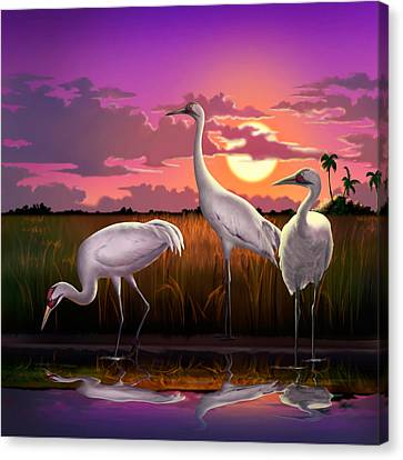 Whooping Cranes At Sunset Tropical Landscape - Square Format Canvas Print