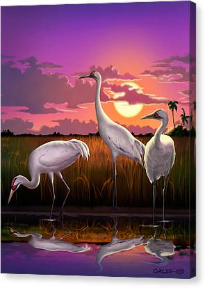 Whooping Cranes Tropical Florida Everglades Sunset Birds Landscape Scene Purple Pink Print Canvas Print by Walt Curlee