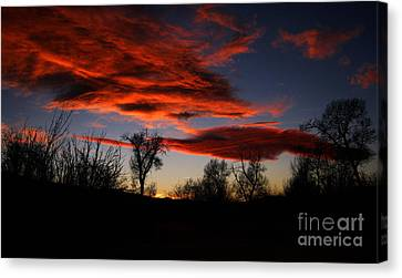 Canvas Print featuring the photograph Wicked Skies by Janice Westerberg