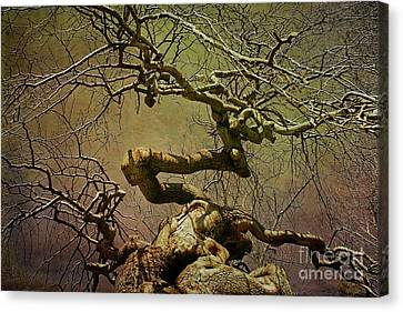 Wicked Tree Canvas Print