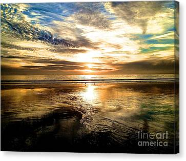 Wide Open Canvas Print by Margie Amberge
