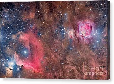 Widefield View Of Orion Nebula Canvas Print by Roberto Colombari