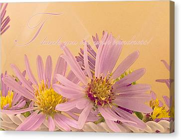 Pink Flower Canvas Print - Wild Asters - Thank You For Your Kindness Card by Sandra Foster